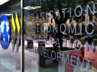Forumul OECD 2017 deputat oana bizgan