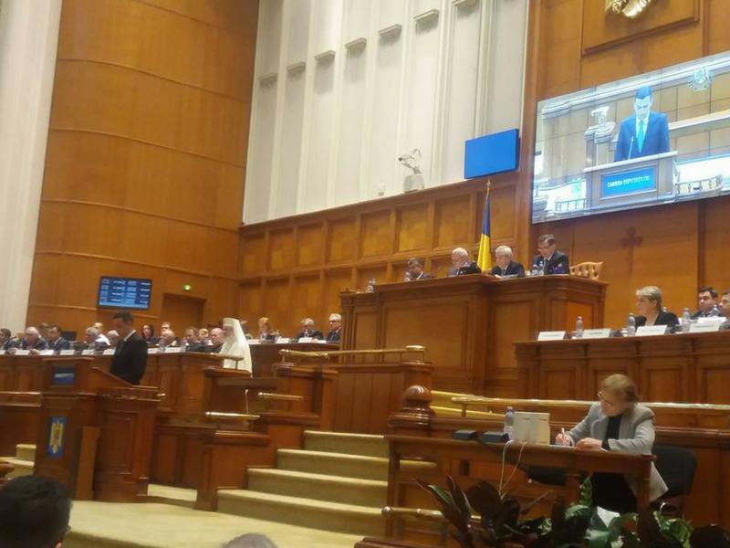 combaterea corupției politice parlamentar oana bizgan