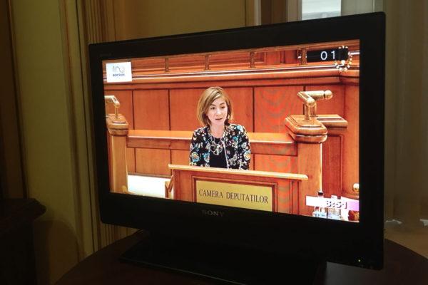 Declarații Politice - Oana Bîzgan - Deputat in Parlament