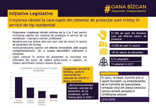 ridicare_vârstă_plasament_raport_Oana_Bîzgan